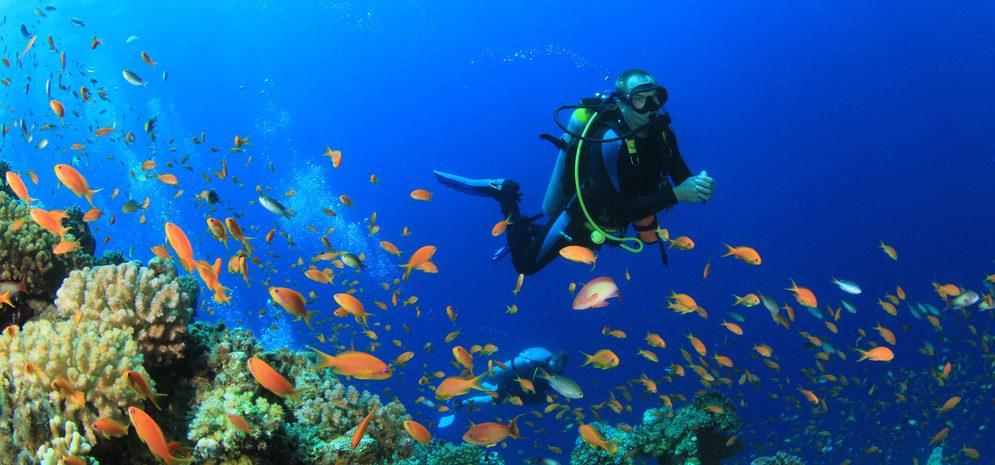 TMJ & Scuba Diving